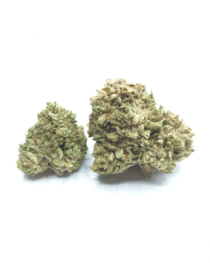White Whale CBG Hemp Flower